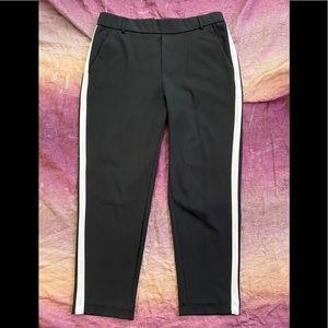 Zara Trafaluc Collection Crop Pull On Pants